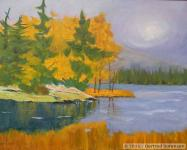Tamaracks in Sunlight - SOLD